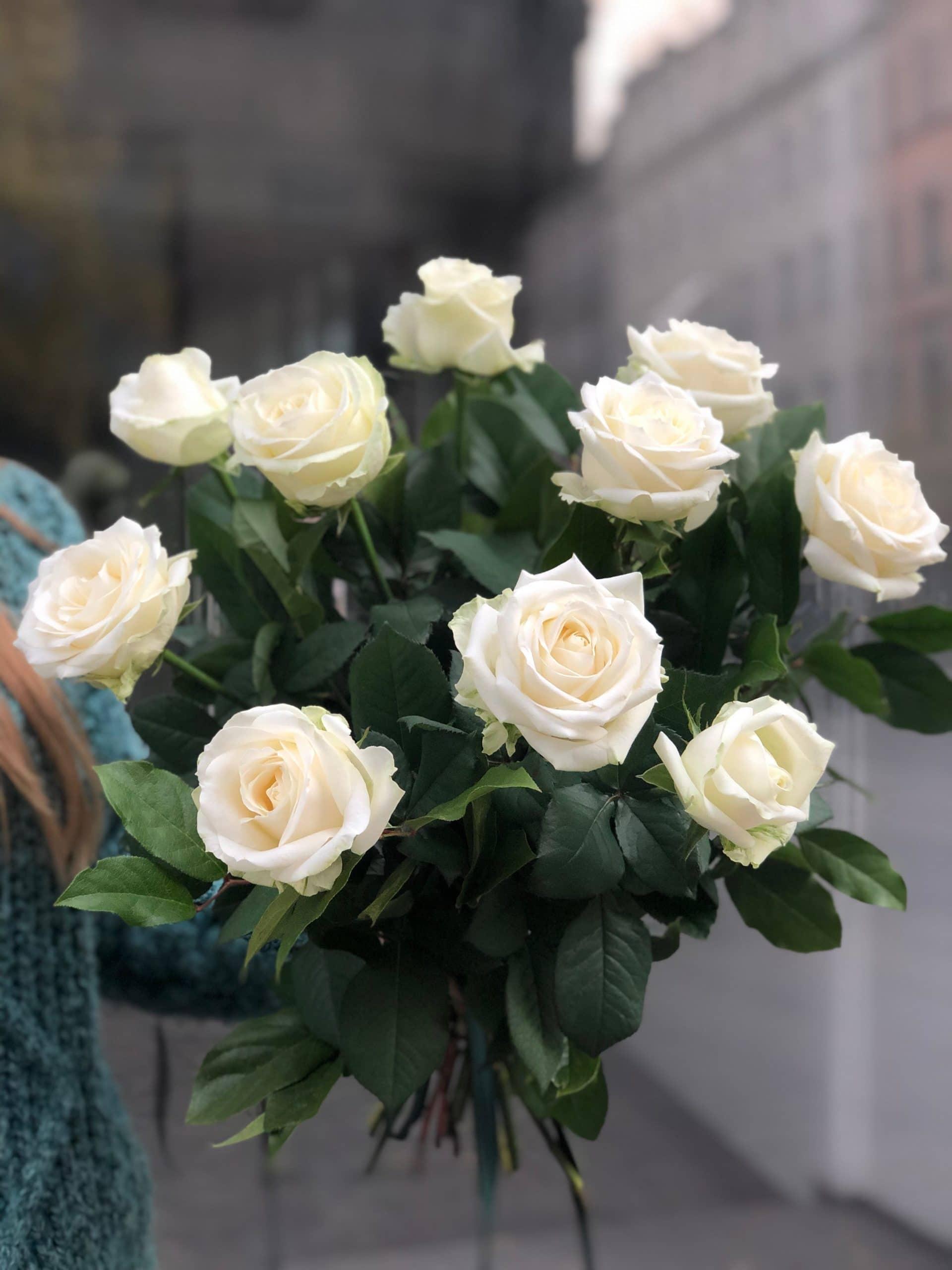 Bukiet Białe Róże